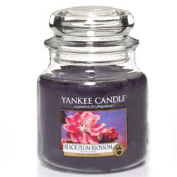Black Plum Blossom - Medium Jar